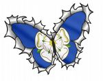 Ripped Torn Metal Butterfly Design With Yorkshire Rose County Flag Motif External Vinyl Car Sticker 125x90mm
